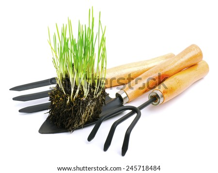 Shovel, rake, garden tools  with green root grass isolated on white - stock photo