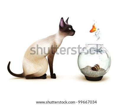 Show no fear, Fish jumping out of a fish bowl in front of a cat. Humor, Part of an animal theme series. - stock photo