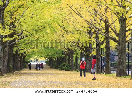 Showa Memorial Park for adv or others purpose use - stock photo