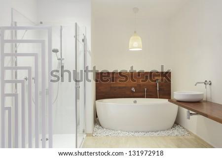 Shower and a bath in modern bathroom - stock photo