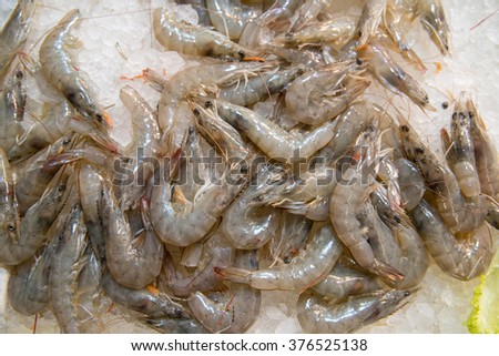 Shrimp exposed in the fish market of Athens, Greece