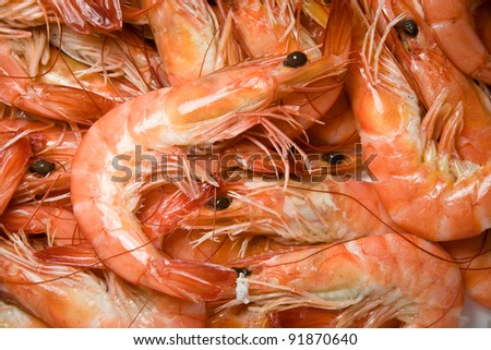 shrimps in a market - stock photo