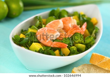 Shrimps on fresh watercress, mango, avocado salad in elongate bowl with baguette on the side (Selective Focus, Focus on the tail of the first shrimp) - stock photo