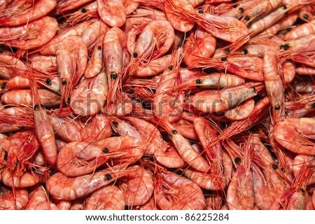 Shrimps. The fish market. Bergen. Norway. - stock photo