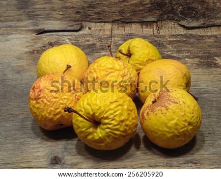 shriveled  yellow  apples  - stock photo