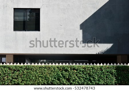 shrubs and white metal fence on blue wall concrete background