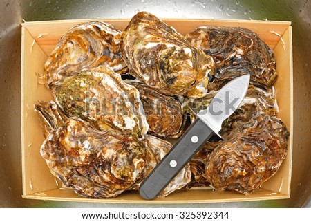 Shucker Knife Opener and Fresh Raw Oysters in Crate - stock photo