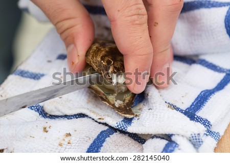 Shucking a fresh oyster with a knife. - stock photo