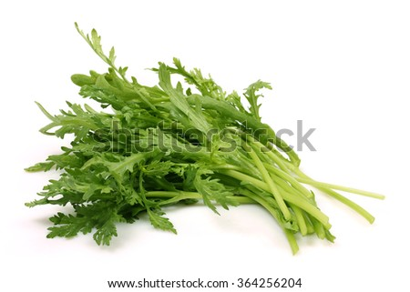 Shungiku, also known as tong hao, or edible chrysanthemum, Isolated on white. A leaf herb commonly used in asian food - stock photo