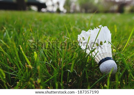 shuttlecock in the grass - stock photo