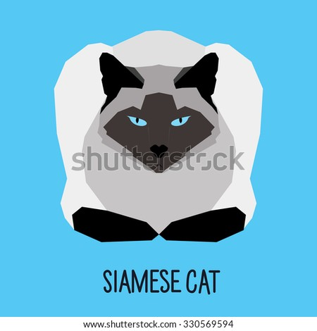 Siamese cat. Abstract Cat. Cartoon cat. Cat isolated on blue. Nature and wild theme. Graphic cat. Cat gaze. Cat close up. Cat for card, book, sketch book, invitation, note book, album. Cat Raster copy - stock photo