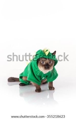 Siamese cat with a green dragon costume on a white background  sc 1 st  Shutterstock & Siamese Cat Green Dragon Costume On Stock Photo (Royalty Free ...