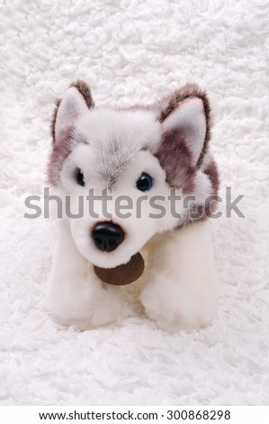 Siberian Husky puppy stuffed toy - stock photo