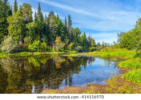 Siberian taiga. - stock photo