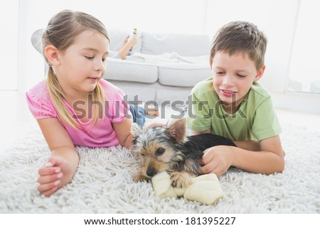 Siblings lying on rug with their yorkshire terrier puppy at home in the living room