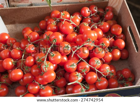 Sicilian box of bunches cherry tomatoes in outdoors market in Sorrento. - stock photo