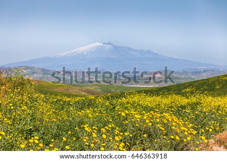 Sicilian landscape with mount Etna, Italy