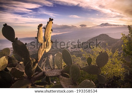 Sicily, Italy: Mount Etna seen from Taormina. Prickly pear on foreground - stock photo