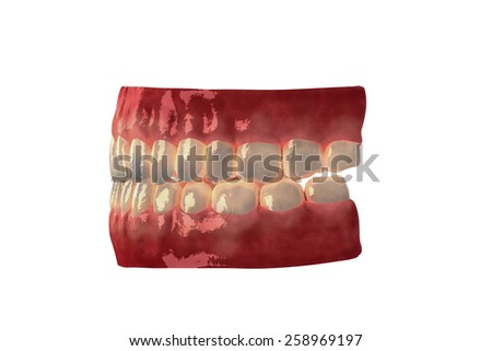side denture isolated on white background