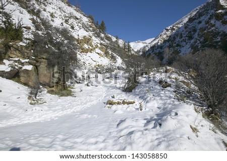 Side road buried under fresh snowfall along Highway 33 north of Ojai, California - stock photo