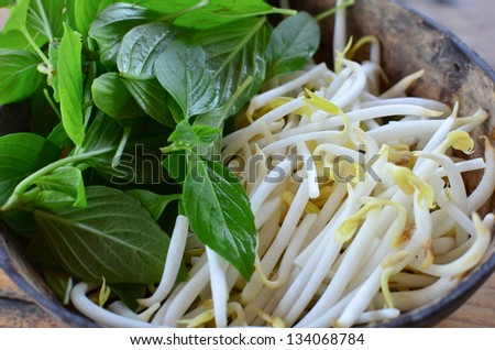 Side vegetable for noodle - stock photo