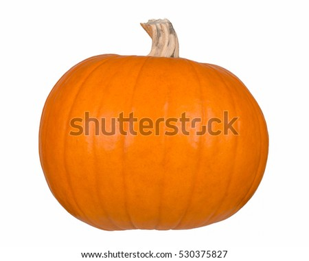 side view of a pumpkin isolated
