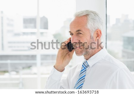 Side view of a smiling mature businessman using mobile phone in a bright office