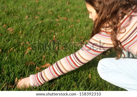 Side view of a young child girl crouching and stretching her arm to collect dry autumn leaves from the green grass ground in a park during a sunny and warm fall day, outdoors. - stock photo