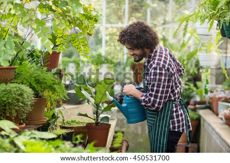 Side view of male gardener watering plants at greenhouse