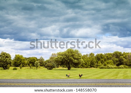 Side View on Countryside Road With Dark Rainy Sky - stock photo