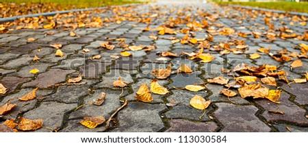 Sidewalk in a park in autumn - stock photo