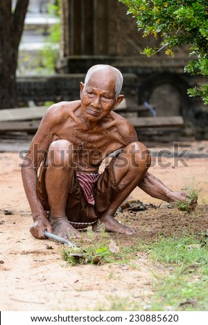 SIEM RIEP, CAMBODIA - SEP 28, 2014: Unidentified Khmer old man works in his garden in Siem Reap. 90% of Cambodian people belong to Khmer etnic group