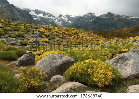 Sierra de Gredos scenery - stock photo