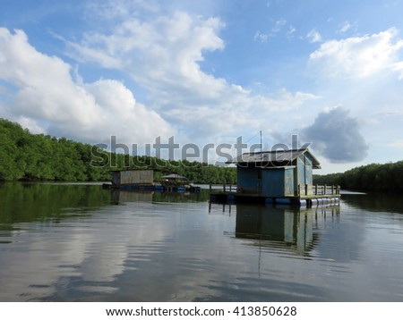 Sights From The Bujang Sungai Lebam River Cruise Of Malaysia - stock photo