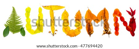 "Sign ""Autumn"" made of autumnal natural objects. Colorful leaves and mushrooms arranged into the ""Autumn"" text. Autumnal mood."