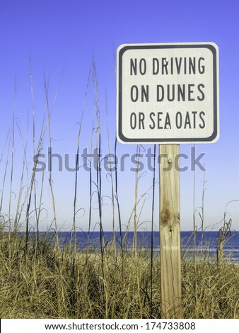 Sign for beach conservation in northern Florida, USA: No Driving on Dunes or Sea Oats
