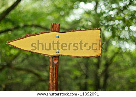Sign in the forest - stock photo