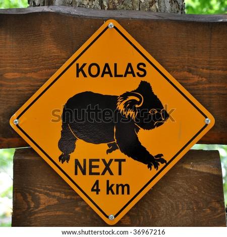 Sign of koalas - stock photo