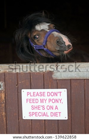 Sign on a stable door requesting people not feed the pony - stock photo