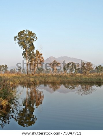 Signature Hong Kong Countryside photo spot: Trees reflections over blue water from Nam Sang Wai Wetland Park, Yuen Long, New Territories - stock photo