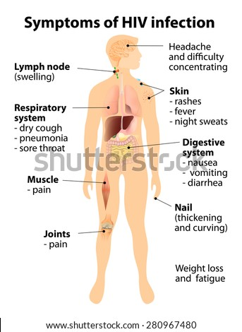 Signs and symptoms of HIV infection. Human silhouette with internal organs - stock photo
