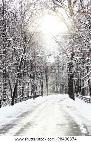 Silent snow-covered urban park in winter. Russia - stock photo