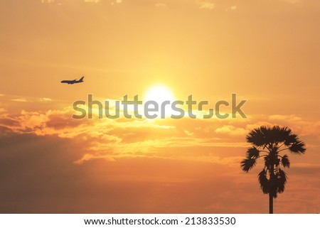 Silhouette aircraft and palm over sunrise background. - stock photo