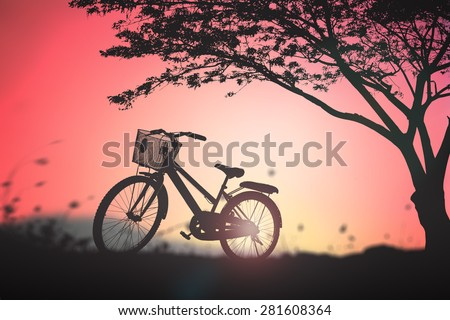 Silhouette bicycle in the meadow and big tree over beautiful sunset background. - stock photo