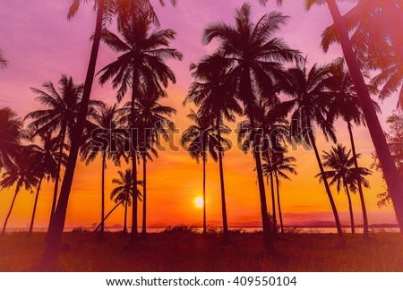 Silhouette coconut palm trees on beach at sunset. Vintage tone. - stock photo