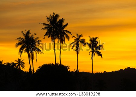 silhouette coconut tree at sunset - stock photo