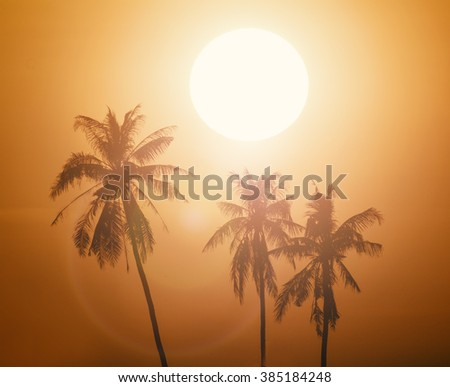 Silhouette Coconut tree in sunset background.