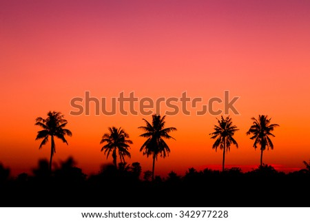 Silhouette coconut tree with sunrise sky background. - stock photo