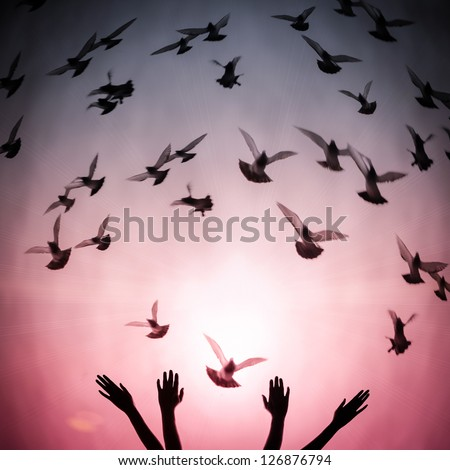 Silhouette hands and flying doves, freedom and peace concept - stock photo