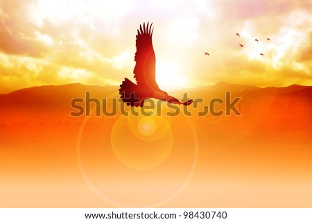 Silhouette illustration of an eagle flying on sunrise - stock photo